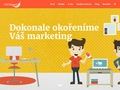 web Komplexní online marketing